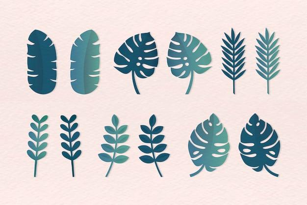 Ustawione różne liście tropikalne