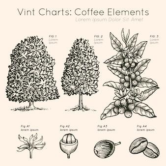 Vint wykresy kawy elementy drzewa wyciągnąć rękę