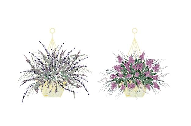 Vintage akwarela fioletowy kwiat doniczka ilustracja