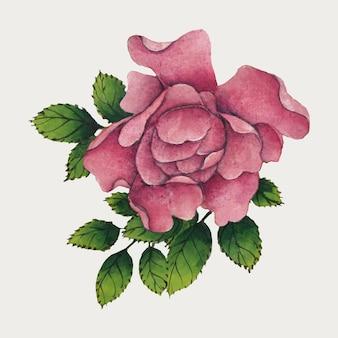 Vintage chiński wektor kwiat róży, remiks z dzieł sztuki autorstwa zhang ruoai