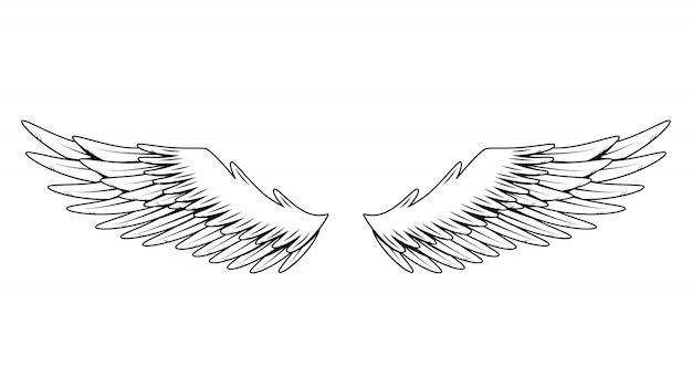 Vintage heraldyczne skrzydła. monochromatyczne stylizowane skrzydła ptaków. zaprojektuj elementy w stylu kolorowania. streszczenie szkic