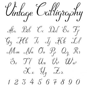 Vintage kaligraficzna czcionka liniowa