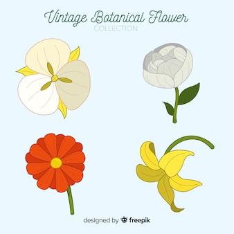 Vintage kolekcja kwiatów botanicznych