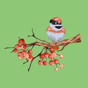 Vintage kwiatowy kartka okolicznościowa, wiosenna lub letnia dekoracja z suchą gałązką, czerwonymi jagodami, jarzębina, mały czerwony ptaszek. kolorowa ilustracja.