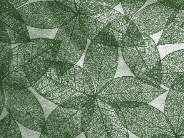 Vintage liści tła ilustracji