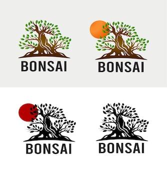 Vintage logo drzewka bonsai