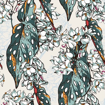 Vintage naturalny tropikalny wzór z kwitnących begonii maculata