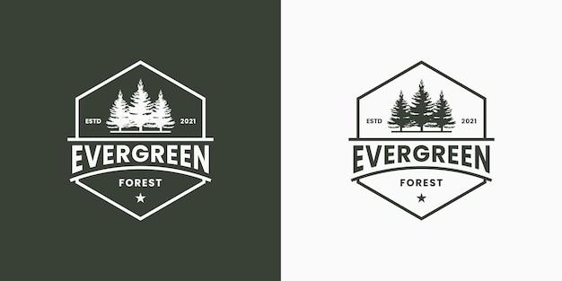Vintage odznaka wiecznie zielona z sześciokątną ramą logo w stylu retro