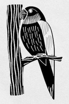 Vintage papuga ptak ręcznie rysowane clipart