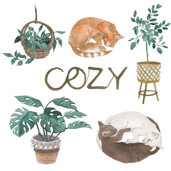 Vintage przytulny domowy styl. koty i rośliny, akwarela ilustracja. pojedyncze elementy wektorów.