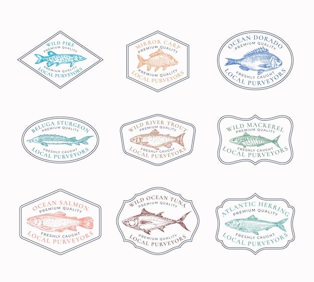 Vintage ramki zestaw odznaki.