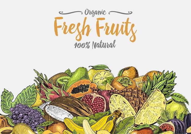 Vintage, ręcznie rysowane tła świeżych owoców, rośliny letnie, wegetariańskie i organiczne cytrusy i inne, grawerowane. ananas, cytryna, papaja, pitaya, maracuya i banany.