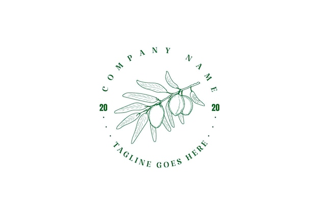 Vintage retro oliwa z oliwek owoce natura logo design vector