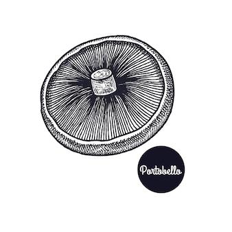 Vintage ryciny grzyb portobello.