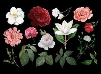 Vintage rysunki kwiatowe