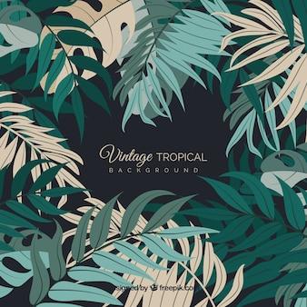 Vintage tropikalny liści tło