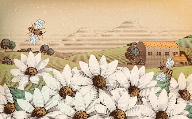 Vintage wiejski krajobraz w stylu grawerowania, dzikich kwiatów i pszczół