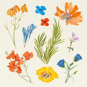 Vintage zestaw ilustracji kwiatowych, zremiksowany z dzieł należących do domeny publicznej