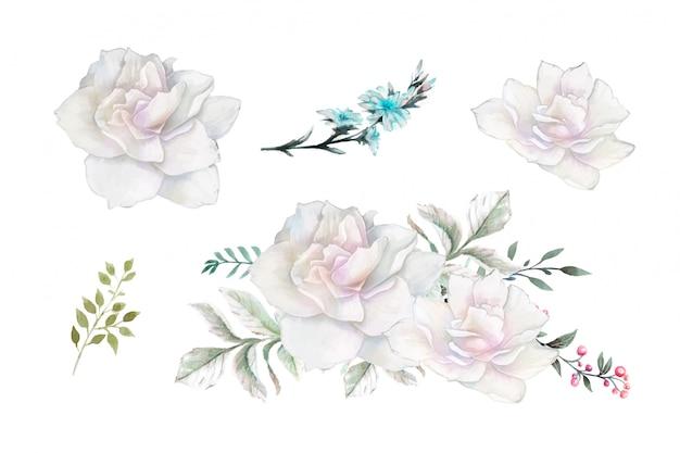 Vintage zestaw róż akwarela.
