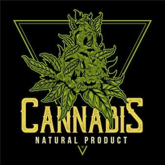 Vintage Zielona Marihuana Do Palenia Medycznego, Naturalny Produkt Marihuany Konopnej. Premium Wektorów