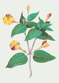 Vintage żółty kwiat