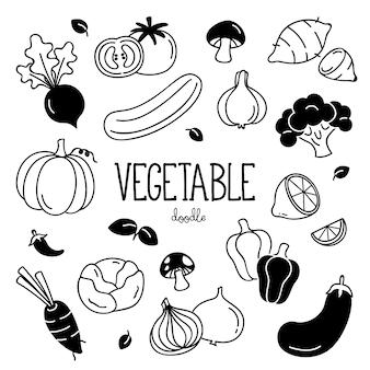 Warzywa do rysowania ręcznego. doodle warzywa.