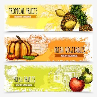 Warzywa i owoce poziome banery