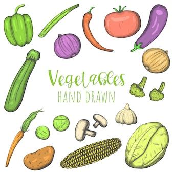 Warzywa ręcznie rysowane kolorowy wektor zestaw, na białym tle naszkicowane warzywa.