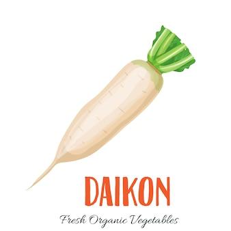 Warzywo daikon