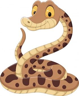 Wąż kreskówka na białym tle