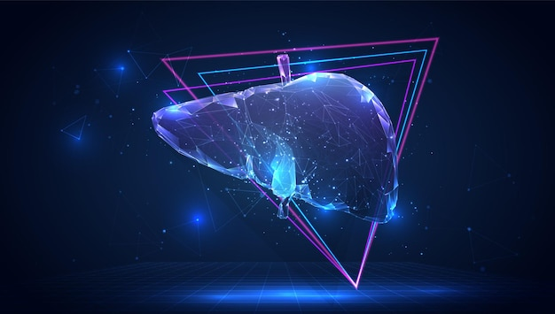 Wektor 3d ludzkiej wątroby na niebieskim tle w wirtualnej przestrzeni