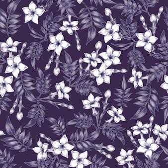 Wektor bezszwowe kwiatowy wzór z kwiatami jaśminu.