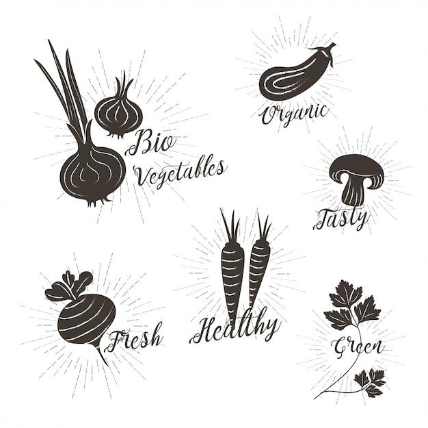 Wektor bio warzywa