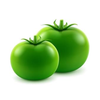 Wektor duże dojrzałe zielone pomidory całe świeże na białym tle