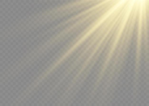 Wektor efekt światła błyskowego przezroczystego światła słonecznego specjalnej soczewki