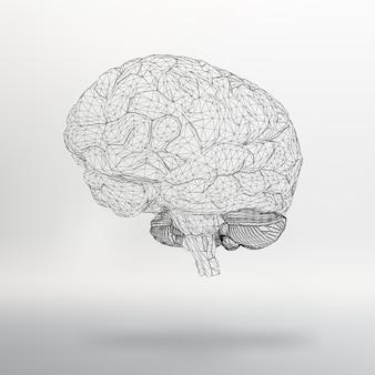 Wektor ilustracja ludzki mózg abstrakcyjne tło siatka molekularna projekt wielokątny