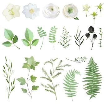 Wektor ilustracja zestaw zielonych liści i kwiatów na białym tle. kolekcja roślin akwarela lato i wiosna. elementy botaniczne na ślub, kartki, banery