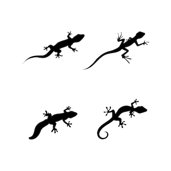 Wektor jaszczurka, design, zwierzę i gad, gekon