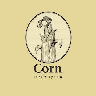 Wektor kolby kukurydzy z liści retro grawerowane ilustracji