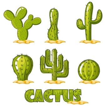 Wektor kolekcja kaktusów