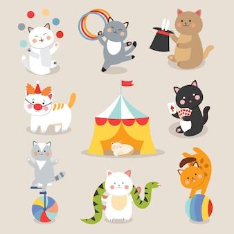 Wektor kotów cyrkowych. zestaw wesołych kotów cyrkowych