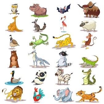 Wektor kreskówka słodkie zwierzęta. zoo zestaw ssaków, gadów i ptaków. charakter ilustracja lew, tygrys, słoń, panda, małpa, niedźwiedź, sowa, nietoperz na białym tle.