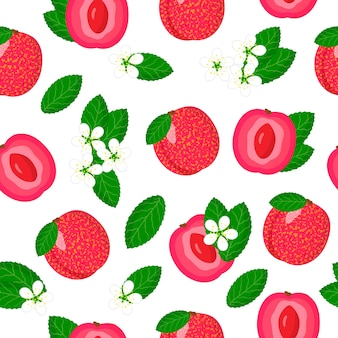 Wektor kreskówka wzór z hybryda śliwka morela lub egzotyczne owoce, kwiaty i liście pluot