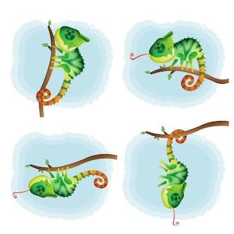 Wektor kreskówka zestaw ładny kameleon