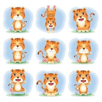 Wektor kreskówka zestaw ładny tygrys