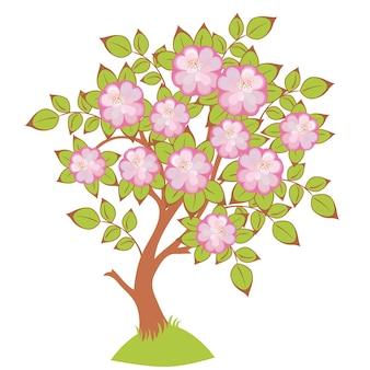 Wektor kwiatów wiśni