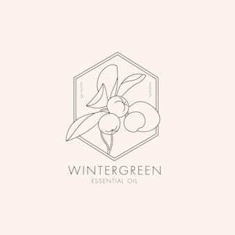 Wektor liniowy botaniczny ikona i symbol wintergreen projekt logo dla olejku wintergreen natur...