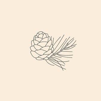 Wektor liniowy ikona botaniczna i symbol - cedr.