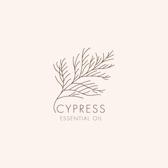 Wektor liniowy ikona botaniczna i symbol - cyprys. zaprojektuj logo cyprysu olejku eterycznego. naturalny produkt kosmetyczny.