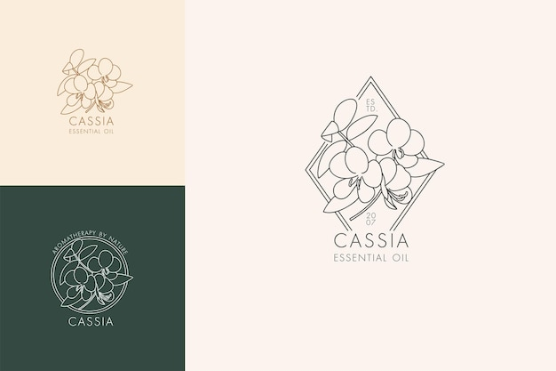 Wektor liniowy zestaw botanicznych ikon i symboli - cassia. zaprojektuj logo dla olejku cassia. naturalny produkt kosmetyczny.